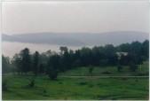 Summer morning fog